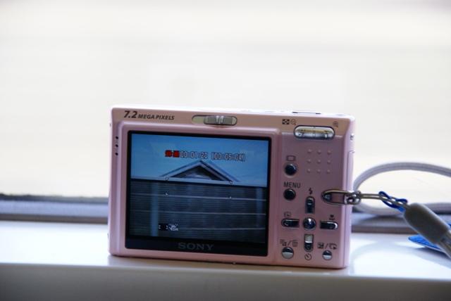DSC0838.jpg